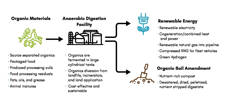 AD Diagram 2021-2-8